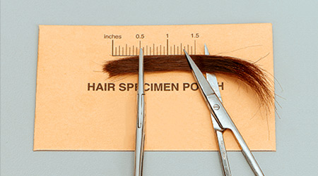 hair follicle drug test sample